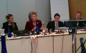 Eurocommissaris Viviane Reding. (Foto Peter Teffer)